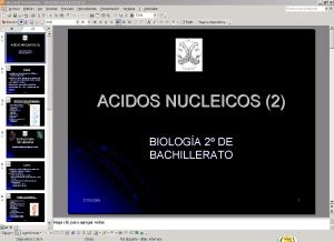 SEGUNDA PRESENTACIÓN DE ÁCIDOS NUCLEICOS