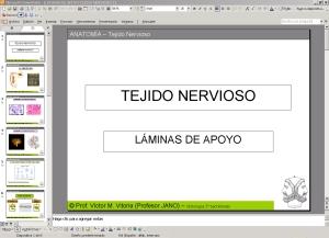 PRESENTACIÓN DE APOYO SOBRE EL TEMA DEL TEJIDO NERVIOSO Y LAS NEURONAS