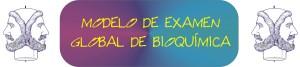 DESCARGA EL EXAMEN