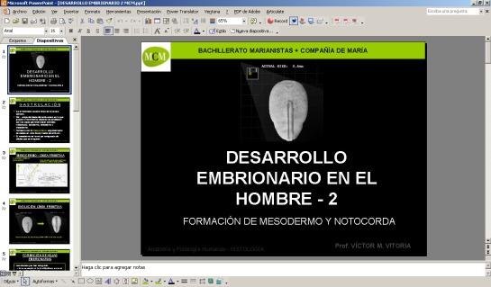 DESCARGA LA PRESENTACIÓN DE DESARROLLO EMBRIONARIO HUMANO 2