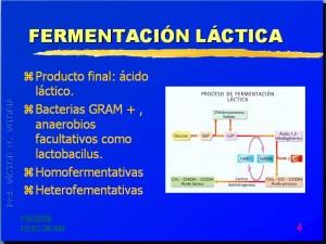 carat-fermentaciones