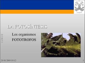 caratula-fotosintesis