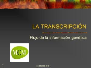caratula-transcripcion-verdadera