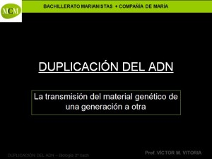 caratula-transcripcion