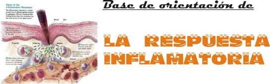 0-respuesta-inflamatoria