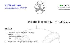 0-esquema-bioquimica